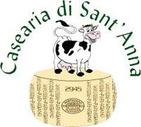 casearia_di_santanna